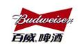 百威logo